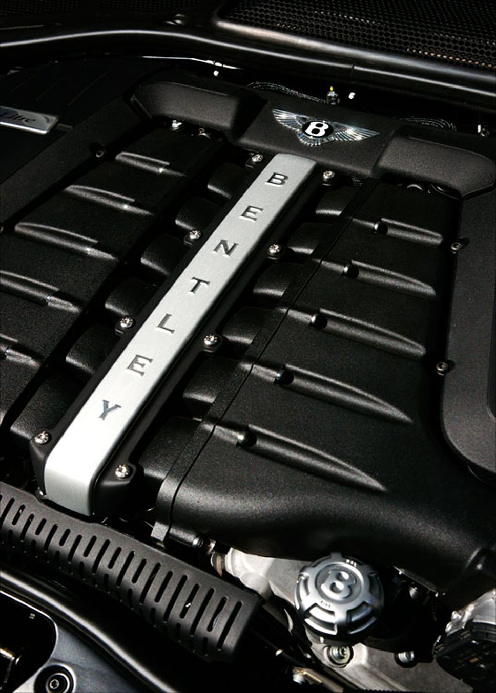 Bentley Continental Supersports Convertible engine #3