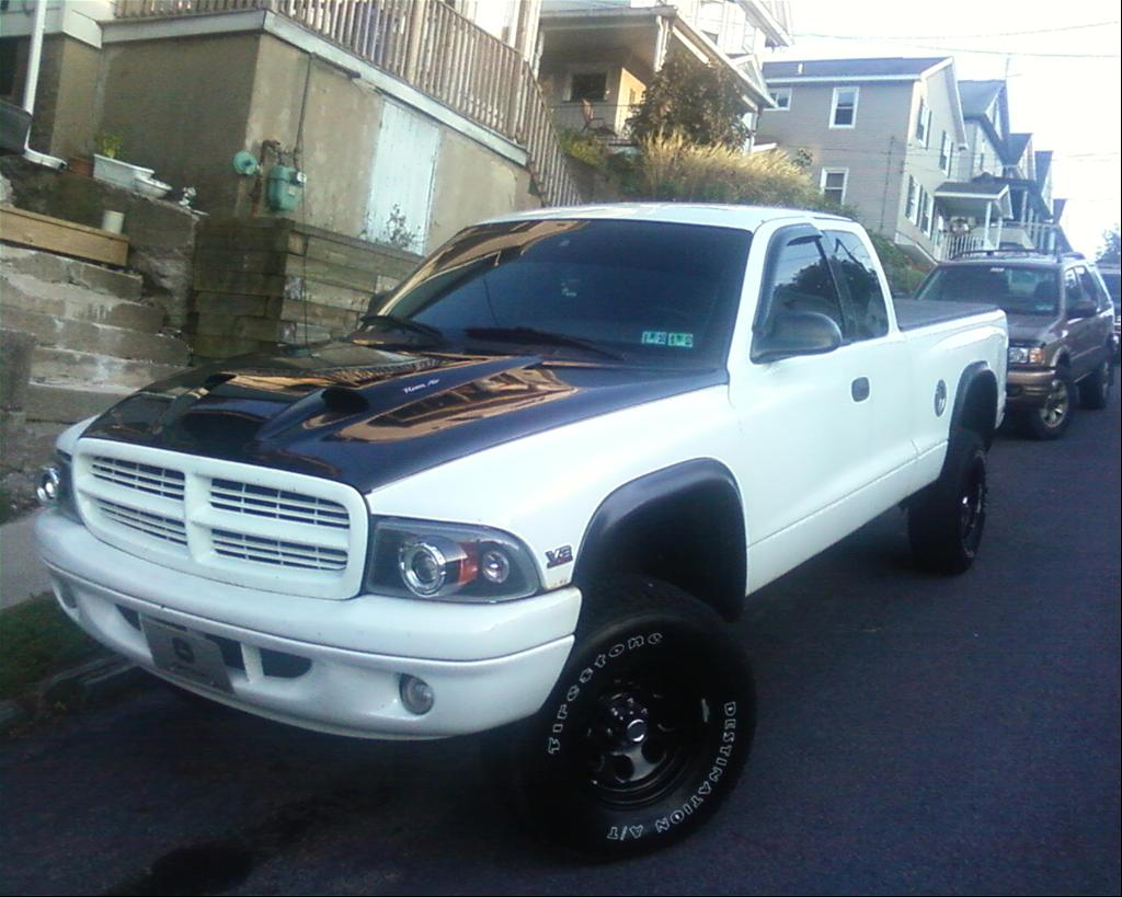 Dodge Dakota white #2