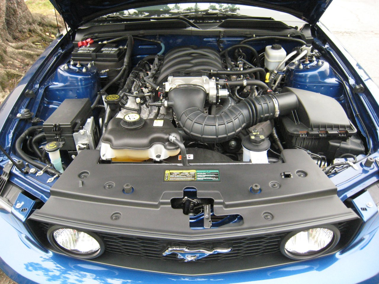 Ford Mustang engine #1