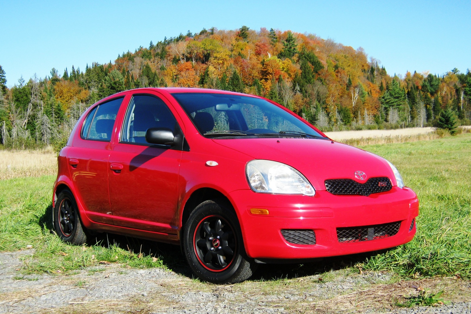 Toyota ECHO red #1